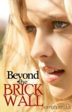 Beyond the Brick Wall by SambaPandas