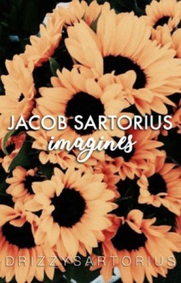 Jacob Sartorius Imagines (complete)