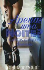 Apenas Uma Noite? (contos eróticos diversos) by seuamormaior