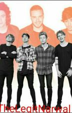 5sos and 1D role play  by TheLegitNarwal