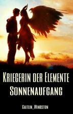 Kriegerin der Elemente [1] by Caitlin_Wingston