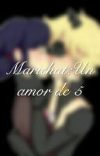 Marinette y Chat Noir by sayu2005