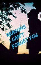 Reasons I Can't Forget You by ccdancer916