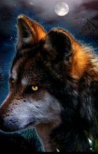 Wild Love by Aelle_04
