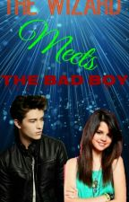 The Wizard Meets The Bad Boy (A Wizards Of Waverly Place Fanfiction) by Theo_Raekens_Wife