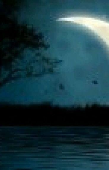 Pasión Nocturna - Amourshipping