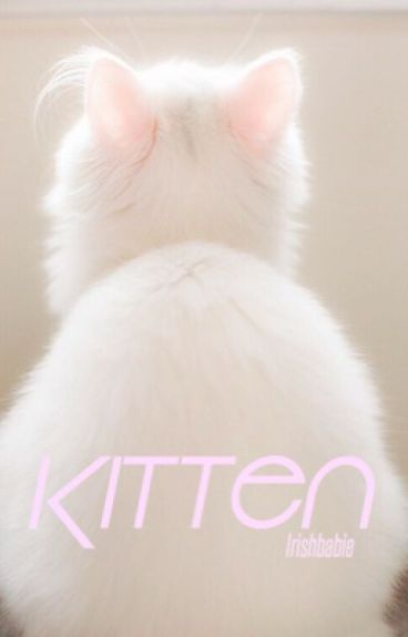 Kitten (Narry Hybrid AU)