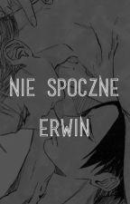Nie spocznę, Erwin by NekoLevi98