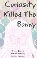Curiosity Killed The Bunny (SAO Fan-Fiction) by meowmeowdivaqueen