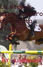 La Storia di un Puledro Diventato Stallone by JuliaBania3