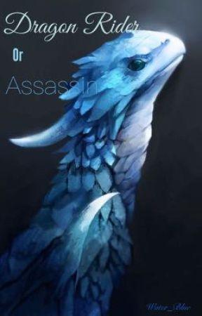 Dragon Rider or Assassin? by xXWater_BlueXx