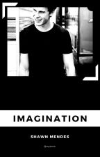 Imagination//Shawn Mendes by WilkMilkSkate