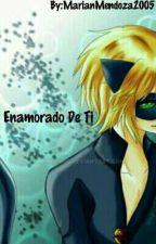 enamorado de la nueva (chat noir y tu) by ladybogycatnoir