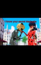I know your secret Marinette  by KateWinx