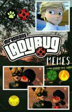 Miraculous Ladybug Memes by Happy_Burrito18