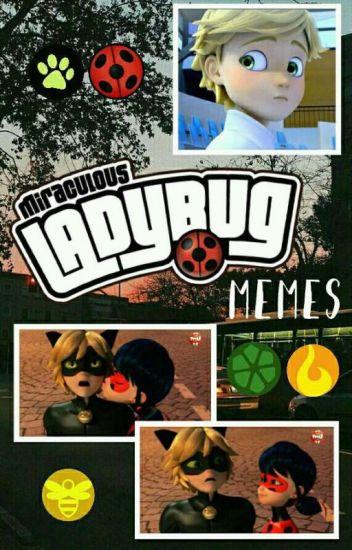 Miraculous Ladybug Memes