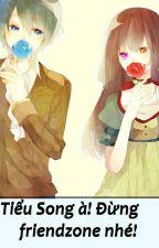 Tiểu Song à! Đừng friendzone nhé! [Song Tử x Bảo Bình] by _Masaharu_