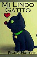 Mi Lindo Gatito [E D I T A N D O] by RiceFtNoir