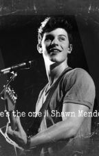 He's the one || Shawn Mendes by shufiv_