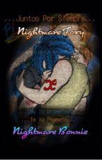 Little Nightmare  (FNAFHS)  ~N Foxy X N Bonnie~ by _Lady_Black_Cat_