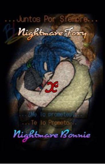 Little Nightmare  (FNAFHS)  ~N Foxy X N Bonnie~