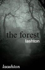 the forest »lashton« by laashton