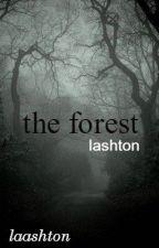 the forest »lashton« by laashton