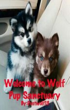 Welcome to Wolf Pup Sanctuary (boyxboyxboy)(mpreg) by Dustwolf13