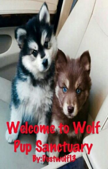 Welcome to Wolf Pup Sanctuary (boyxboyxboy)(mpreg)