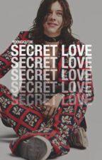 Secret Admirer. h.s by CamilaRachel_Styles