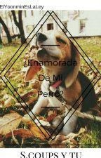 ¿Enamorada De Mi Perro? S.coups Y Tu [Seventeen] by ElYoonminEsLaLey