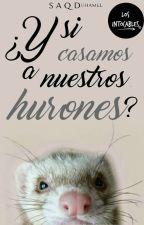 ¿Y si casamos a nuestros hurones? | Los Intocables #2 by SimySRusher