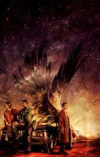 OMG Eu Estou Em Supernatural ( CONCLUÍDA )  by AnAteenwolf1D