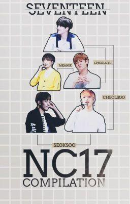 Đọc truyện Seventeen NC17 COMPILATION