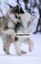 Snapchat//Phan (Italiano) by D-SliceDan