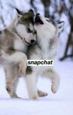 Snapchat//Phan (Italiano) by Mr-Sandman