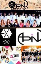 [ exopink]  cuộc sống của idol by HNguyn757621
