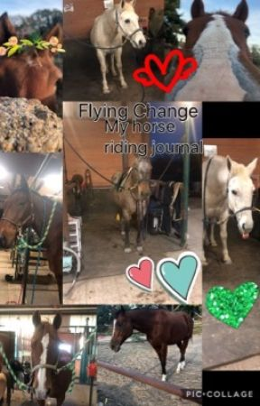 Flying change: My Horse Riding Journal  by WishfulTears