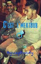 C'est L'mektoub •EN PAUSE• by zapbondy
