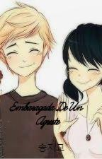 Embarazada De Un Agreste - Miraculous ladybug by Verotaisho050204