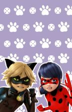 Miraculous Ladybug Memes!!! And More!!! by Golden_01Rose