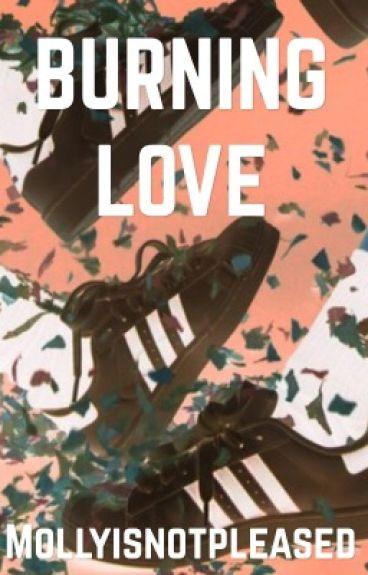Burning Love || Dan howell x Reader