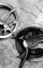 gli Hunger Games visti da Gale. by Primulanita