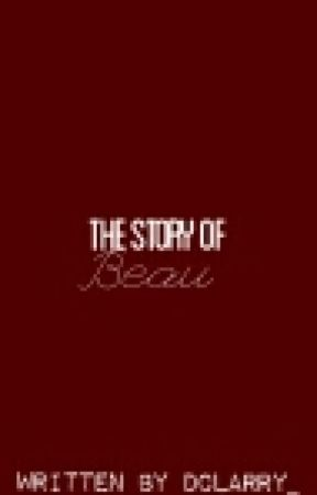 The Story Of Beau |COMPLETED| by winter_spangles