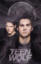 One Shot Teen Wolf by noemiharpia