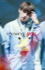 Knowing You (TzuyuxJungkook FF) by Isnishbiz_13