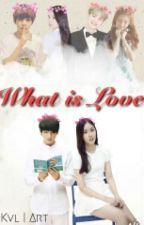What Is LOVE?[COMPLAT] by SINBABY_CHU