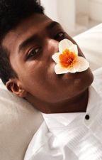 S{he} Wears a Flower Crown {BoyxBoy & FIN} by -yxungest