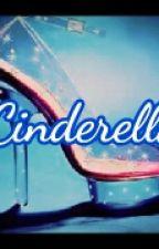 7 Cinderellas [BTOB with their princess] by NNNNNieyo