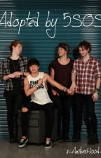 Adopted By 5SOS {Dutch Fan Fic} by x-AmberHood-x